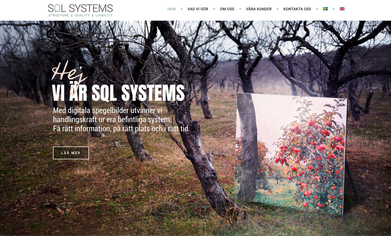 portfolio_SQL_Systems1